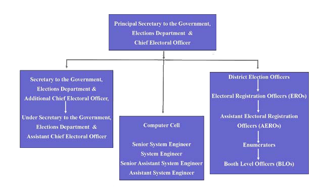 Organisational Chart of the Chief Electoral Officer